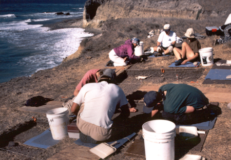 nsf archaeology dissertation Grant advice i am a biological anthropologist by training and yet many of the questions on which i work can easily be approached from the perspective of social anthropology.