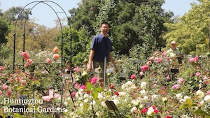 Credits and locations for jane austen game theorist - Huntington beach botanical garden ...